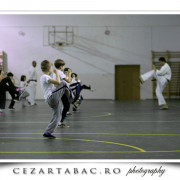 curs de Karate